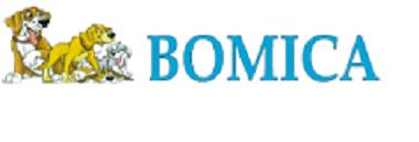 Bomica